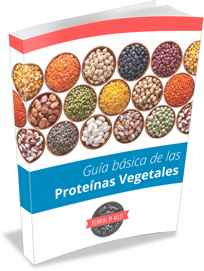 Guía básica de las proteínas vegetales